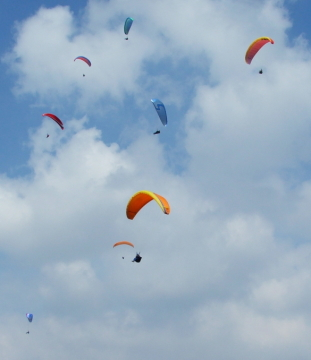 Paragliders thermalling at Devil's Dyke